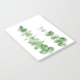 Eucalyptus leaves. Notebook