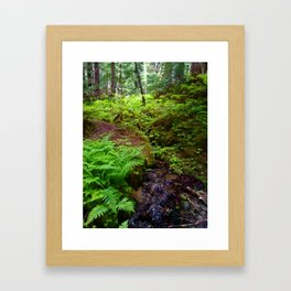 Hiking in Whistler-Blackcomb Framed Art Print