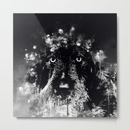 wire haired dachshund dog wsbw Metal Print