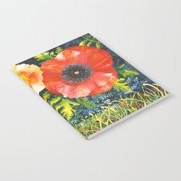 Turf Wars Notebook
