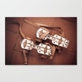 Ols rollers Canvas Print