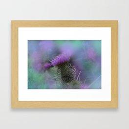 little pleasures of nature -164- Framed Art Print