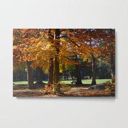 Autumn's Smile Metal Print