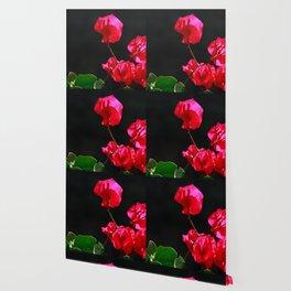 Pink bougainvilleas Wallpaper