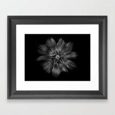 Backyard Flowers In Black And White 22 Flow Version Framed Art Print
