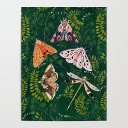 Moths and dragonfly Poster