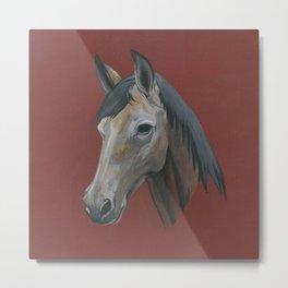 Horse Head Equestrian Equus Metal Print