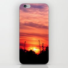 dusk iPhone & iPod Skin