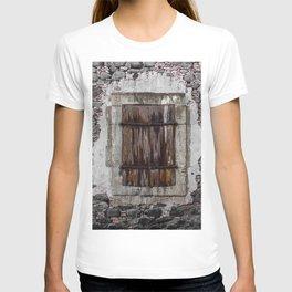 Wooden Window T-shirt