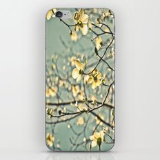 Aqua Dogwood iPhone & iPod Skin