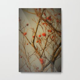 Red Pearls on a windy day Metal Print