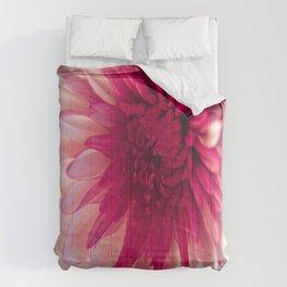 Pink Dahlia Comforters