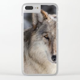 Wolf in the Snowy Woods Hunting Clear iPhone Case