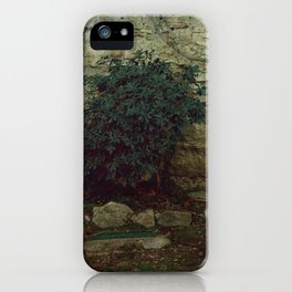 One little thing iPhone Case