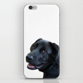 Smiling Black Labrador Retriever iPhone Skin