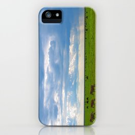 Zebra crossing Ndutu iPhone Case