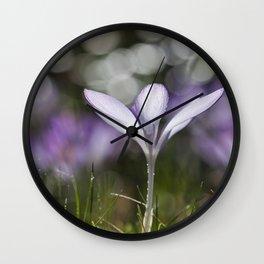 Blue Spring Flower  Crocus - Floral Wall Clock