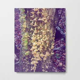 Fairy Bells and Whistles Metal Print