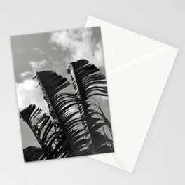 banana leaves, black and white Stationery Cards