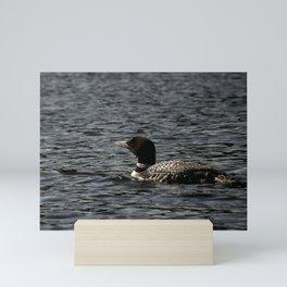 Loon Mini Art Print