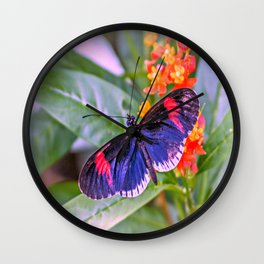 Red Postman Butterfly Wall Clock