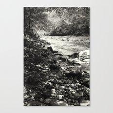 Speckled Creekside Canvas Print
