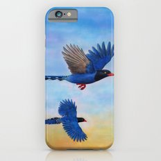 Taiwan Blue Magpies (2) Slim Case iPhone 6s