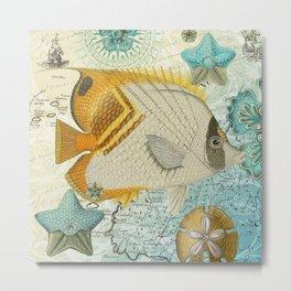 Angel Fish Metal Print