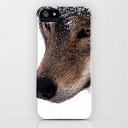 Wolf In the Snow iPhone Case