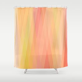 Re-Created Vertices No. 16 by Robert S. Lee Shower Curtain