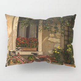BICYCLE LEANING ON HOUSE Pillow Sham
