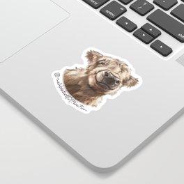 Finn Logo Sticker