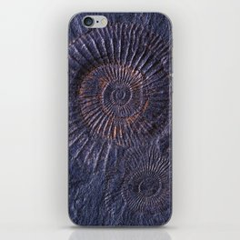 Ancient fossils iPhone Skin