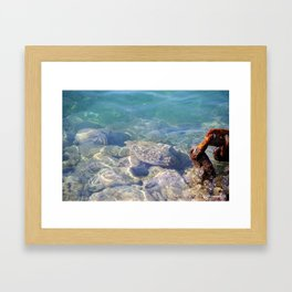 Hawaiian Harbor Waters Framed Art Print