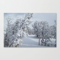 snow Canvas Prints featuring Snow by Chris Root