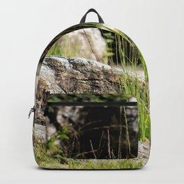 Natures Garden Backpack