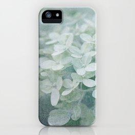 Veiled Beauty iPhone Case