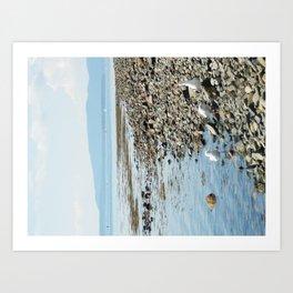 Seagull Landscape Art Print