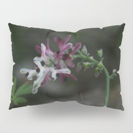 Earth Smoke Flower Pillow Sham