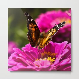 A butterfly flaps its wings Metal Print