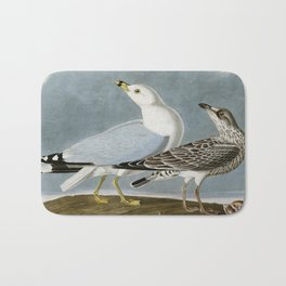 Vintage Seagull Illustration - Audubon Bath Mat