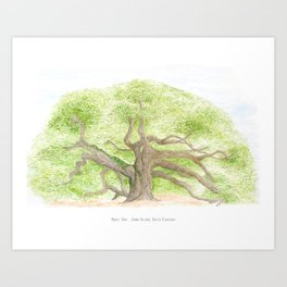 Angel Oak Art Print