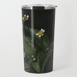 Botanical Still Life Chamomile Travel Mug