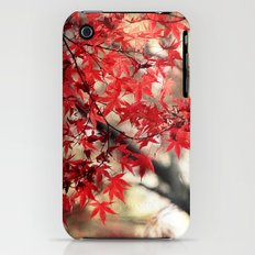 Japanese Maple iPhone (3g, 3gs) Slim Case