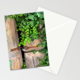 Old Wooden door with ivy | Travel photography from Greece | Fine art photograpy print in color.  Stationery Cards
