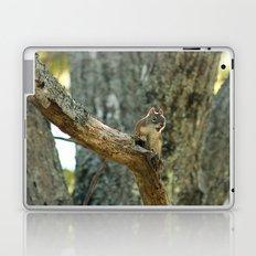 Brown Squirrel Laptop & iPad Skin