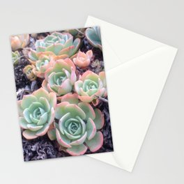 Californian Cacti Stationery Cards