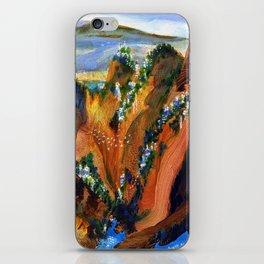 Faraway Place I iPhone Skin