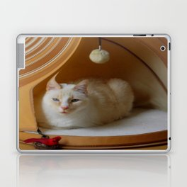 My cat is my zen master Laptop & iPad Skin