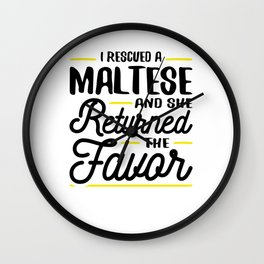 Rescued a Maltese She Returned the Favor Wall Clock